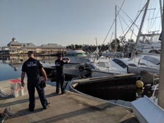 photo of hurricane-damaged yachts