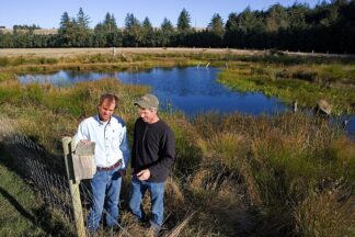 two men, bird house and wetland in Oregon