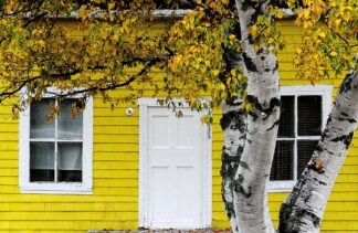 yellow clapboard house of some age