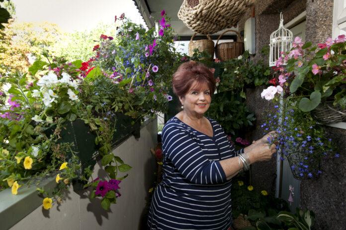 A Birmingham council housing resident tends a magnificent balcony flower garden