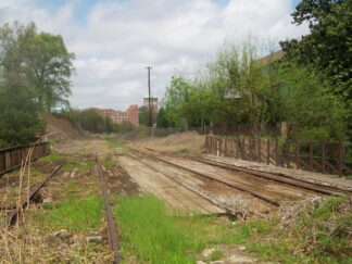 A section of abandoned railway much overgrown with weeds and bush