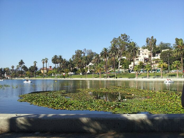 view of Echo Park Lake in Los Angeles