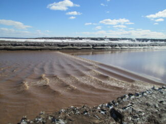 ripples on muddy water mark the tidal bore at Moncton, NB