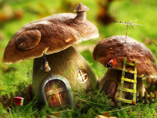 Two wild mushrooms decorated as tiny homes