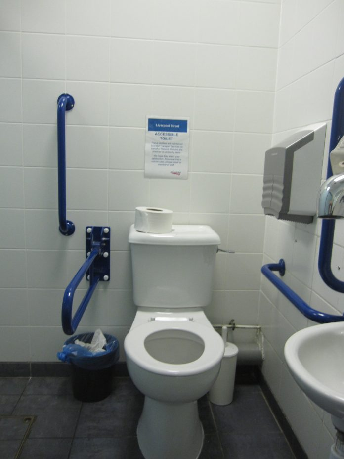 A fairly normal looking bathroom but with grab bars all over the place