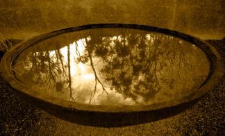 water in abird bath reflects a bush fire in Victoria, Australia