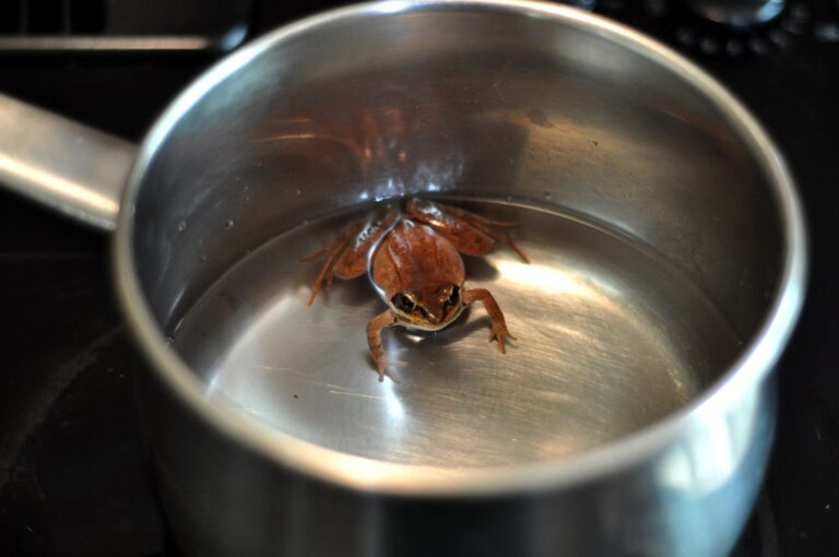 Renter Or Owner-Frog Cozy In Warming Water? Stop The Future Now!