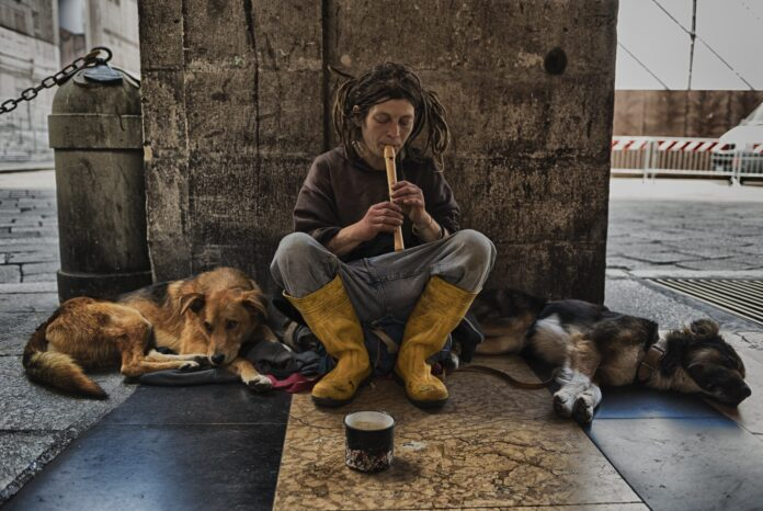A homeless person sits beside a pillar, playing a recorder, dogs stretched out on either side