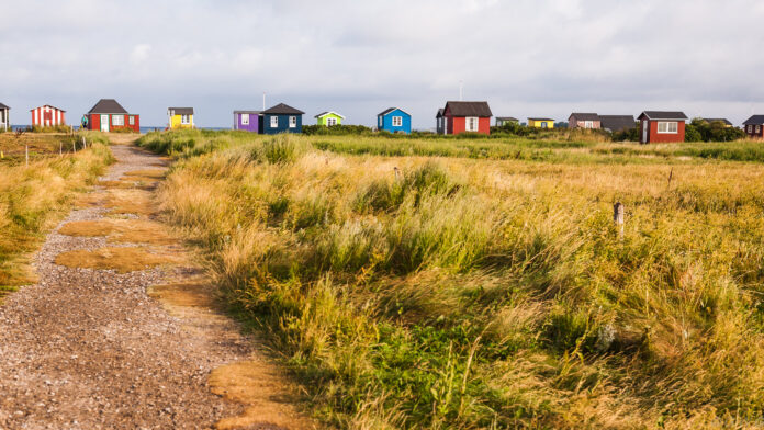 Beyond a field of long grass, a row of colourful tiny houses break the skyline