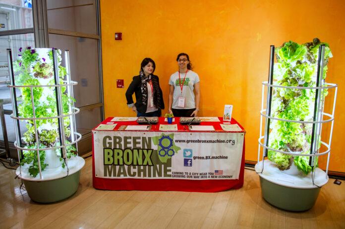 green bronx machine display